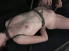 Paraffin wax toyed hog tied pierced victim pleased